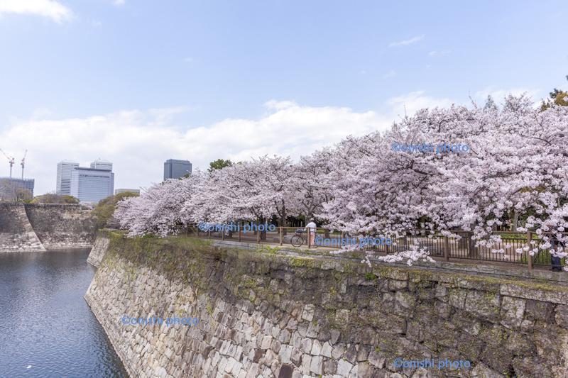 大阪城公園 撮影スポット