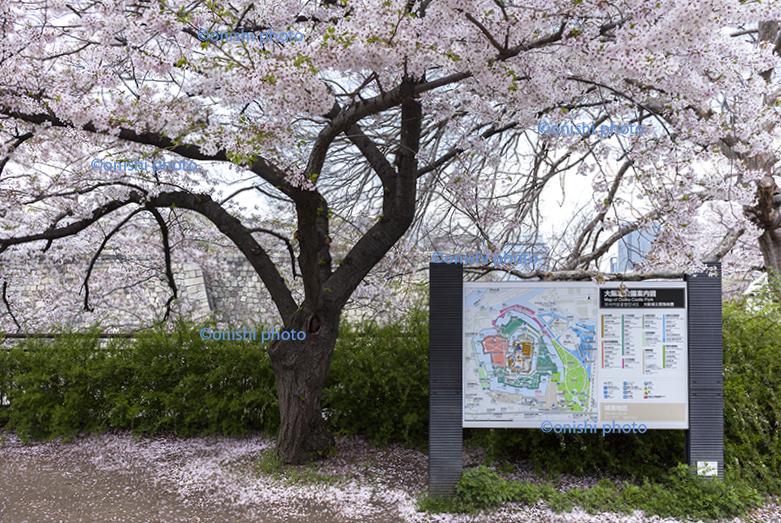 大阪城公園 マップ