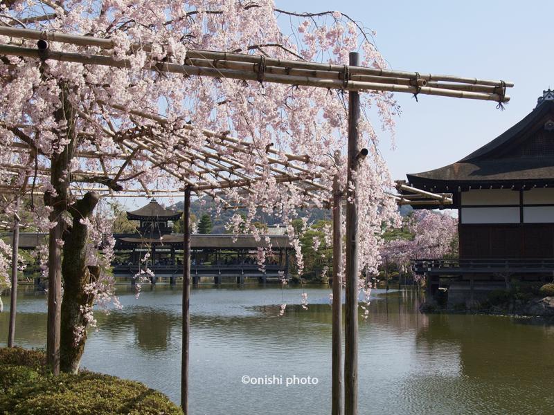 京都観光 コース